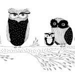 Atrapalibros, Compendio ilustrado de animales fascinantes y sus curiosidades